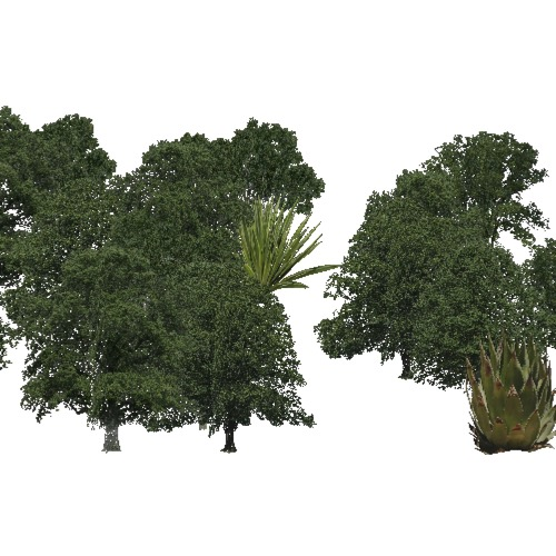 Screenshot of Broadleaf dense, hot, semi-dry