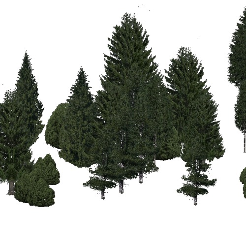Screenshot of Conifer dense, very cold, not dry