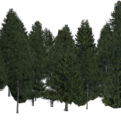 Screenshot of Conifer dense, warm, dry and semi-dry