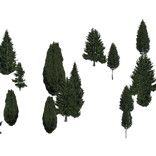 Screenshot of Conifer sparse, hot, dry