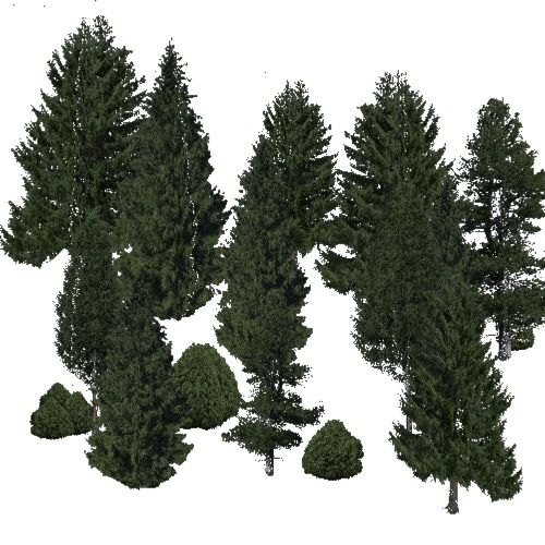 Screenshot of Conifer sparse, very cold