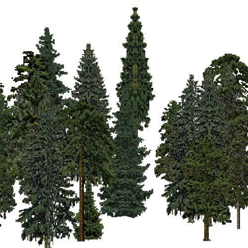 Screenshot of European Forest, Alpine, Conifer