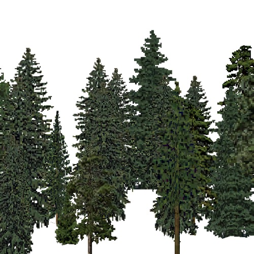 Screenshot of European Forest, Boreal, Conifer