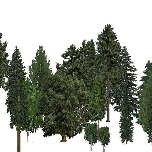 Screenshot of European Forest, Boreal, Mixed