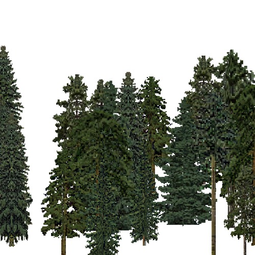 Screenshot of European Forest, Continental, Conifer