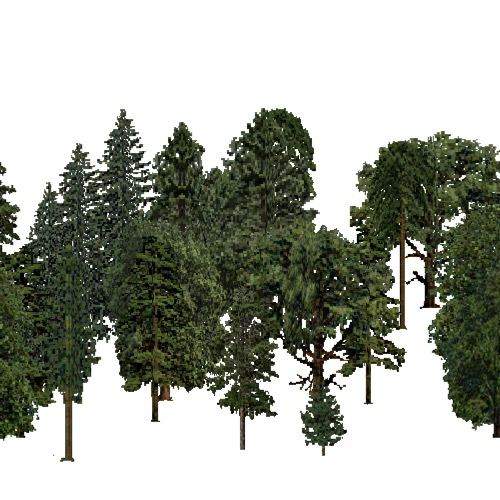 Screenshot of European Forest, Continental, Mixed