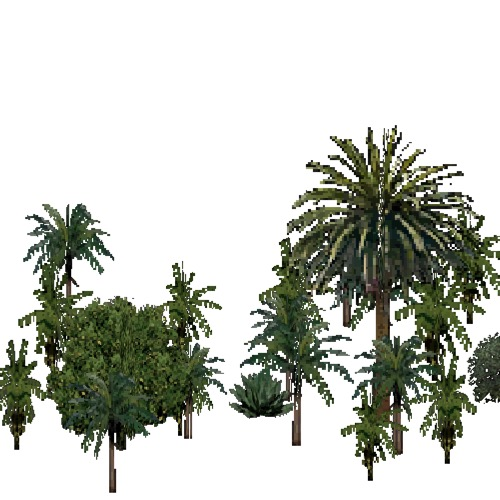 Screenshot of European Forest, Macaronesia, Fruit