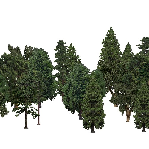 Screenshot of European Forest, Macaronesia, Mixed