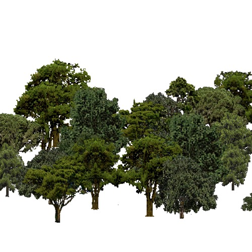 Screenshot of European Forest, Mediterranean, Mixed
