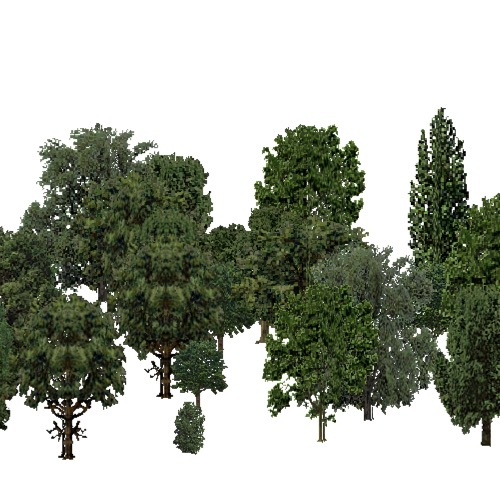 Screenshot of European Forest, Pannonian, Broad Leaf