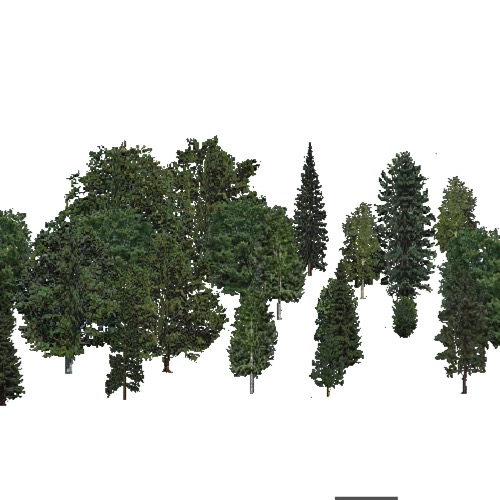 Screenshot of USA Forest, Adirondack New England, Mixed Sparse