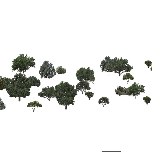 Screenshot of USA Forest, American Semi Desert And Desert, Deciduous Dense
