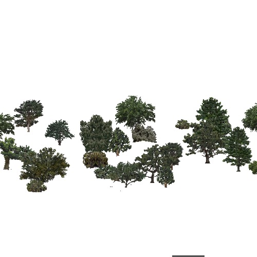 Screenshot of USA Forest, American Semi Desert And Desert, Mixed Dense