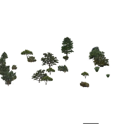 Screenshot of USA Forest, American Semi Desert And Desert, Mixed Sparse