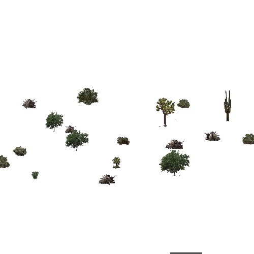 Screenshot of USA Forest, American Semi Desert And Desert, Shrub
