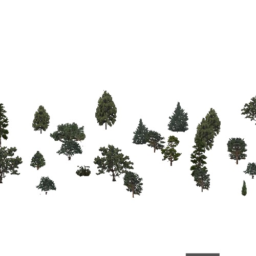 Screenshot of USA Forest, Arizona New Mexico, Evergreen Sparse