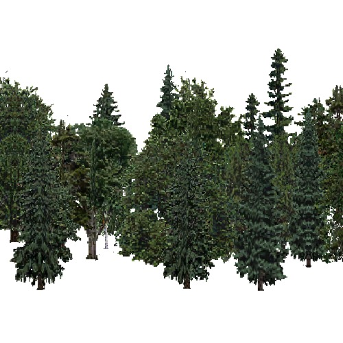 Screenshot of USA Forest, Black Hills, Mixed Dense