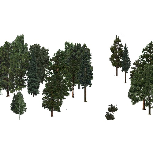 Screenshot of USA Forest, Black Hills, Mixed Sparse