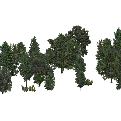 Screenshot of USA Forest, Black Hills, Woodywetland
