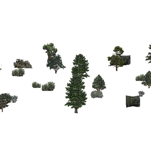 Screenshot of USA Forest, California Coastal Chapparra, Evergreen Sparse