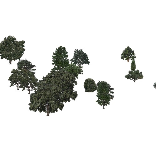 Screenshot of USA Forest, California Coastal Chapparra, Mixed Sparse