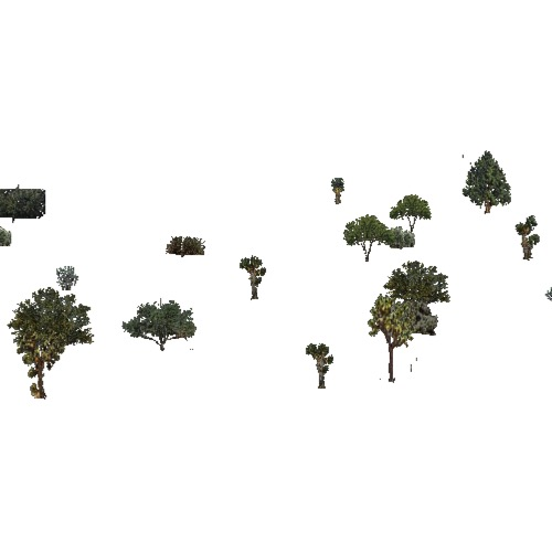 Screenshot of USA Forest, California Coastal Chapparra, Shrub