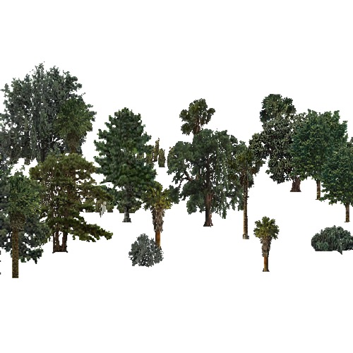 Screenshot of USA Forest, California Coastal Chapparra, Woodywetland
