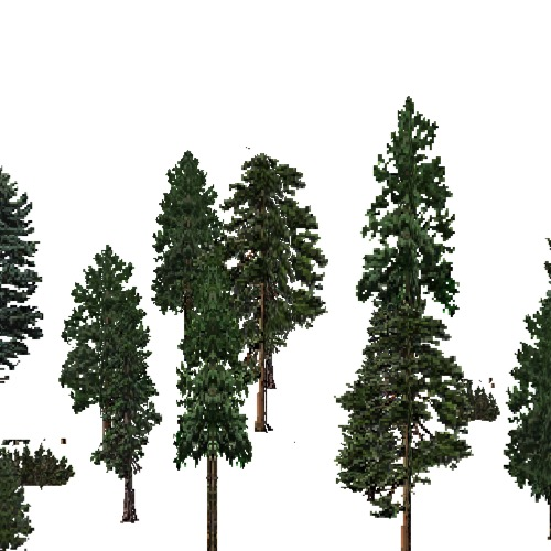 Screenshot of USA Forest, Cascade, Evergreen Sparse