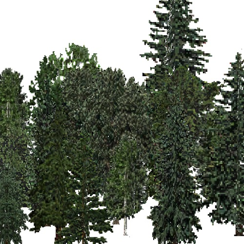 Screenshot of USA Forest, Cascade, Mixed Dense
