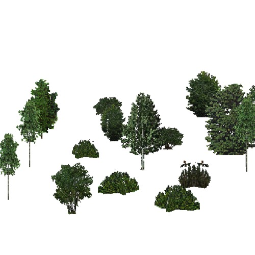 Screenshot of USA Forest, Cascade, Shrub