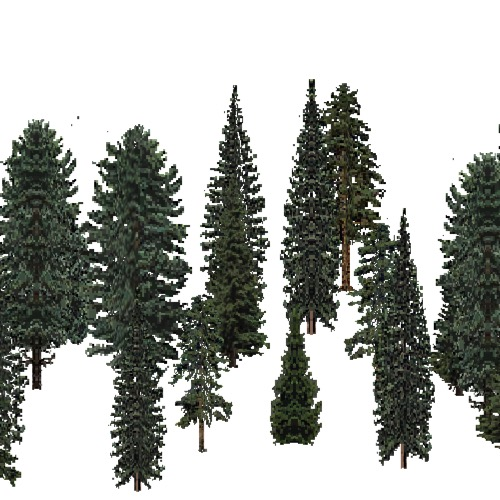 Screenshot of USA Forest, Central Appalachian, Evergreen Sparse