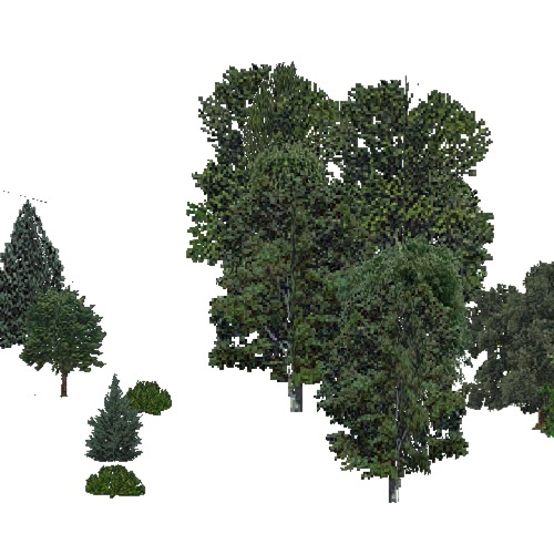 Screenshot of USA Forest, Eastern Oceanic, Mixed Sparse