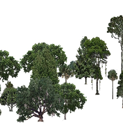 Screenshot of USA Forest, Everglades, Evergreen Dense