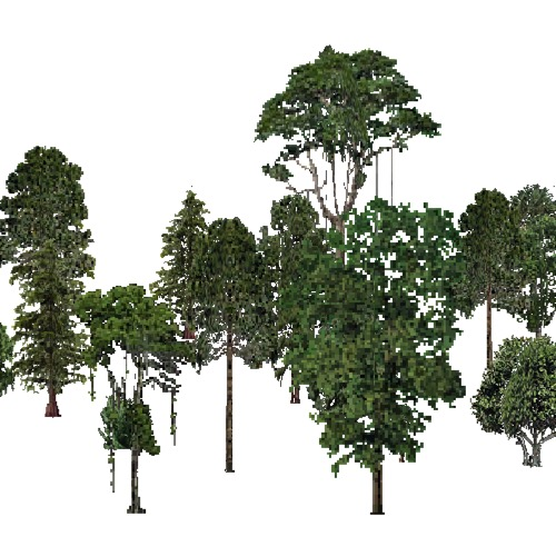 Screenshot of USA Forest, Everglades, Mixed Dense