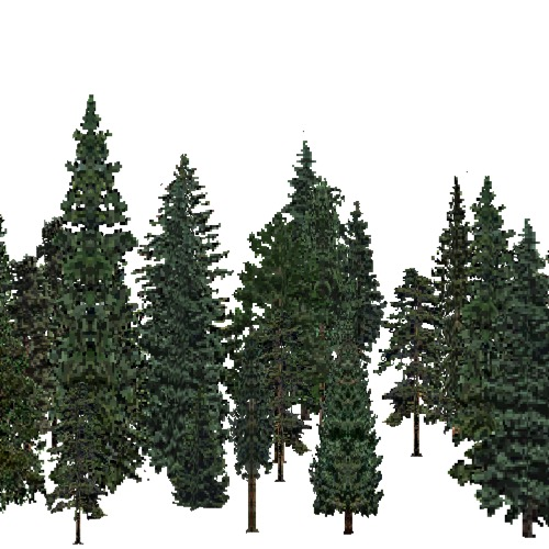Screenshot of USA Forest, Great Plains Steppe, Evergreen Dense