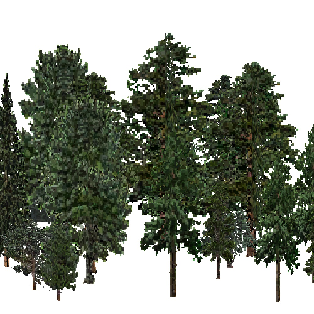Screenshot of USA Forest, Intermountain Semi Desert, Evergreen Dense