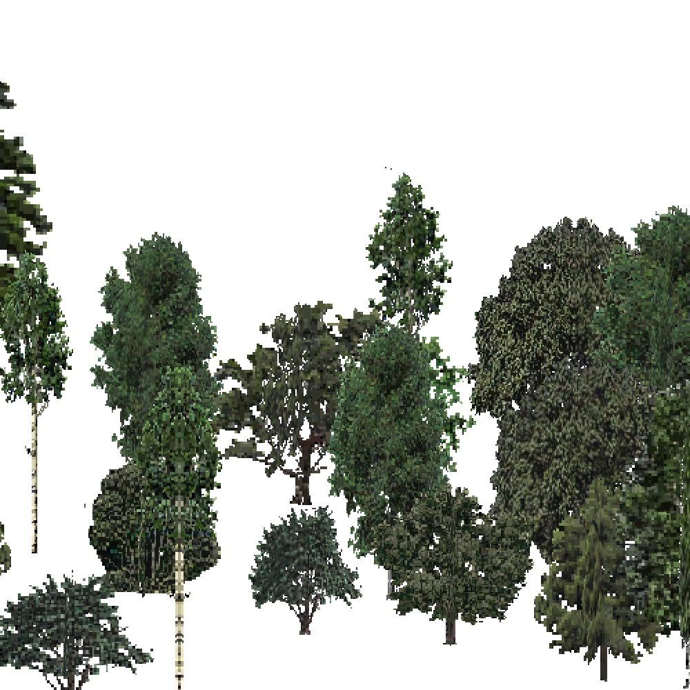 Screenshot of USA Forest, Intermountain Semi Desert, Mixed Dense