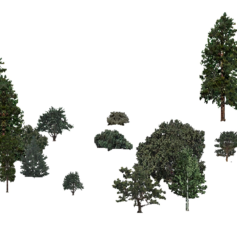 Screenshot of USA Forest, Intermountain Semi Desert, Mixed Sparse