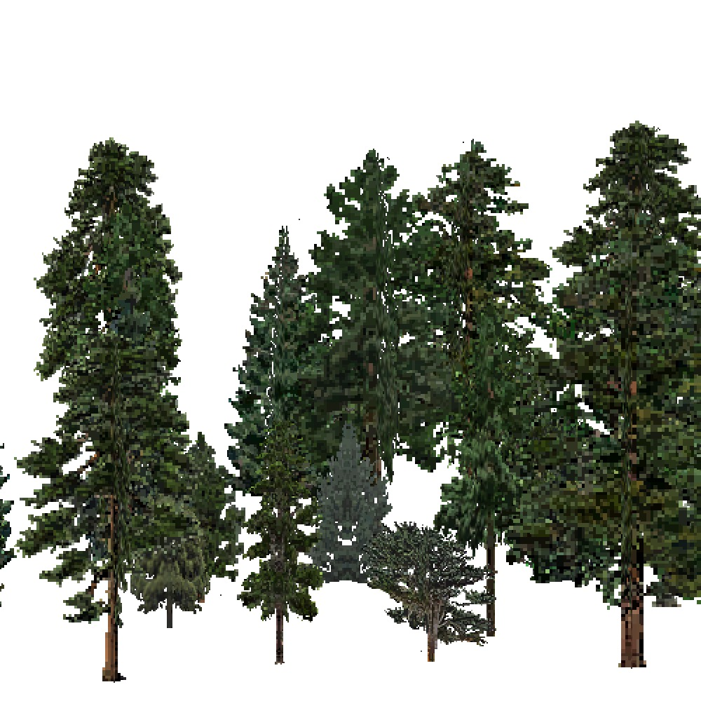 Screenshot of USA Forest, Intermountain Semi Desert And Desert, Evergreen Dense
