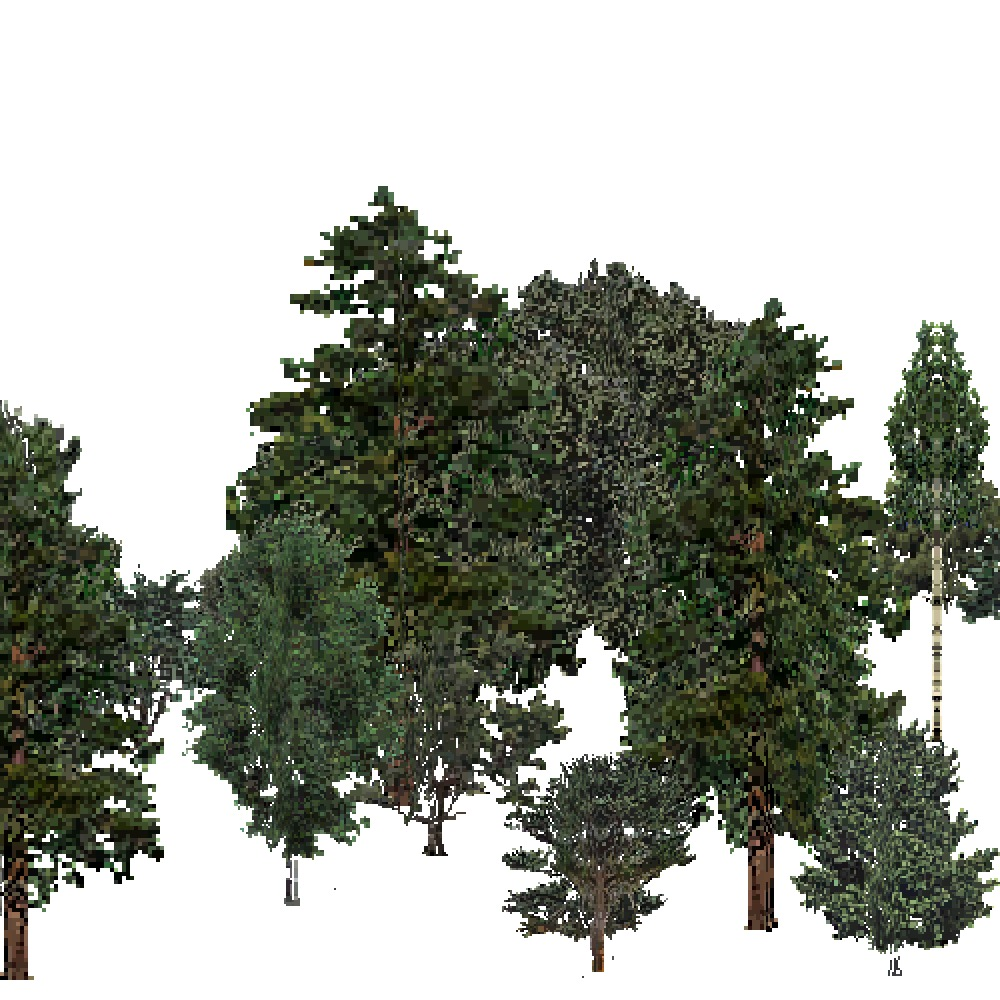 Screenshot of USA Forest, Intermountain Semi Desert And Desert, Mixed Dense