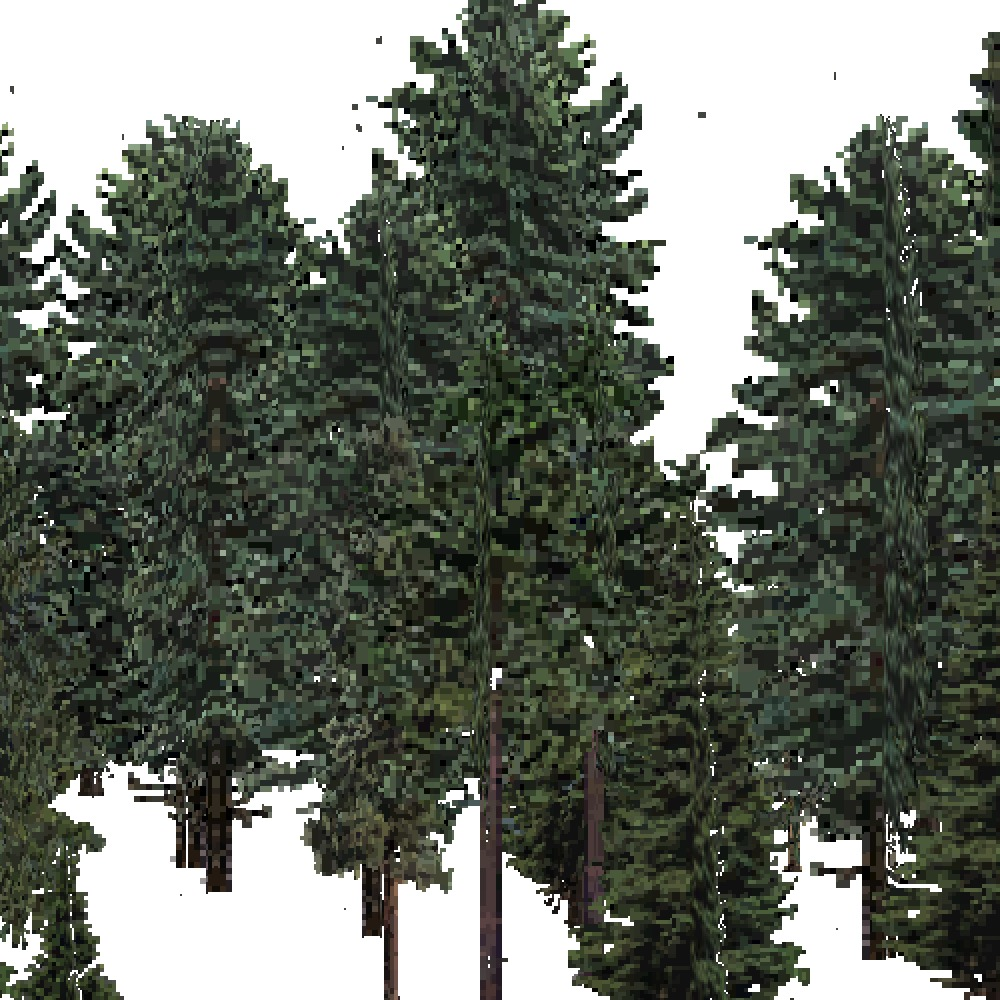 Screenshot of USA Forest, Laurentian, Evergreen Dense