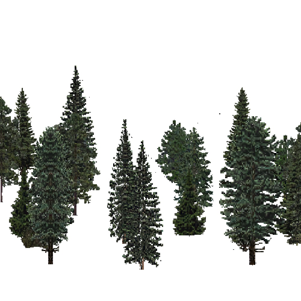 Screenshot of USA Forest, Laurentian, Evergreen Sparse