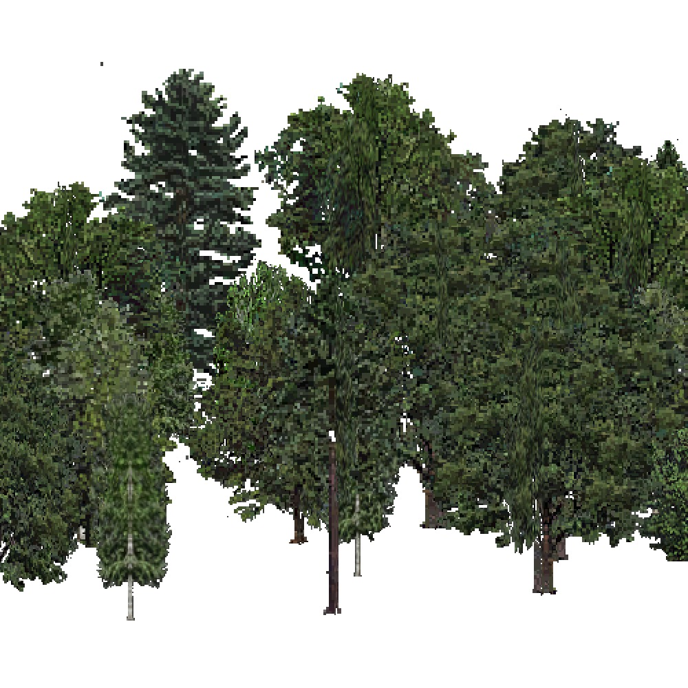 Screenshot of USA Forest, Laurentian, Mixed Dense
