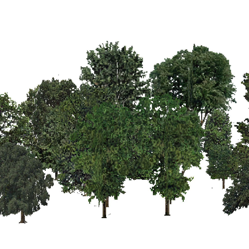 Screenshot of Deciduous Dense