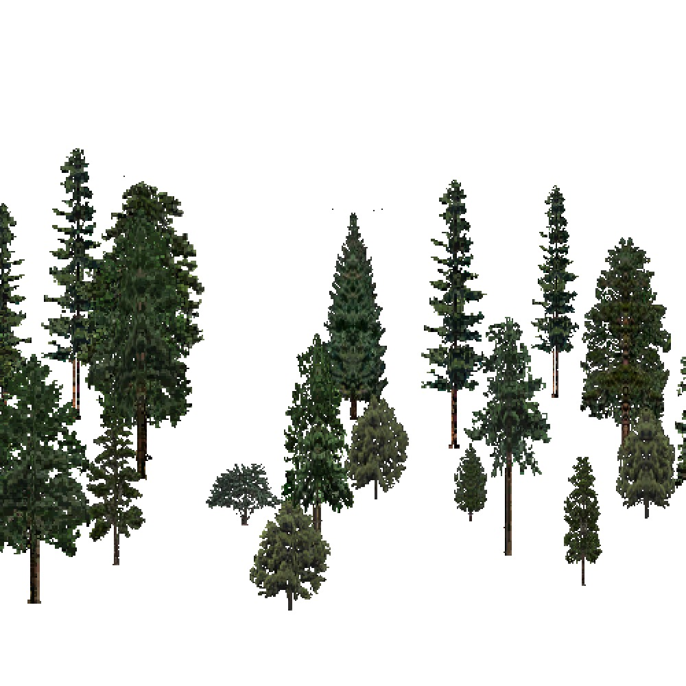 Screenshot of USA Forest, Middle Rocky Mountain, Evergreen Sparse