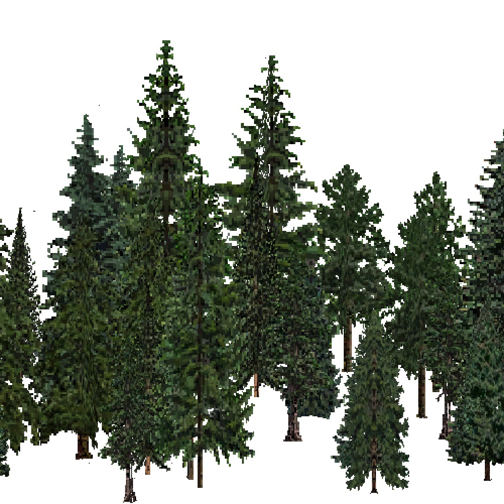 Screenshot of USA Forest, Northern Rocky Mountain, Evergreen Dense