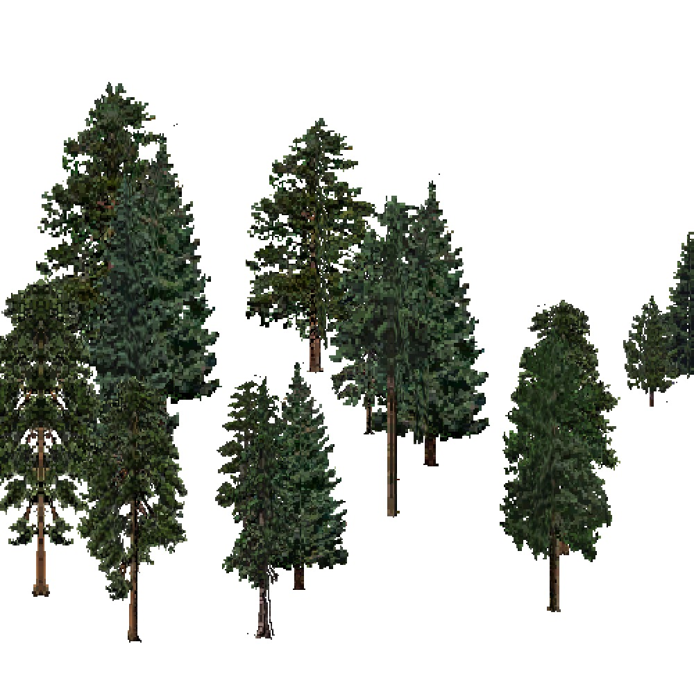 Screenshot of USA Forest, Northern Rocky Mountain, Evergreen Sparse