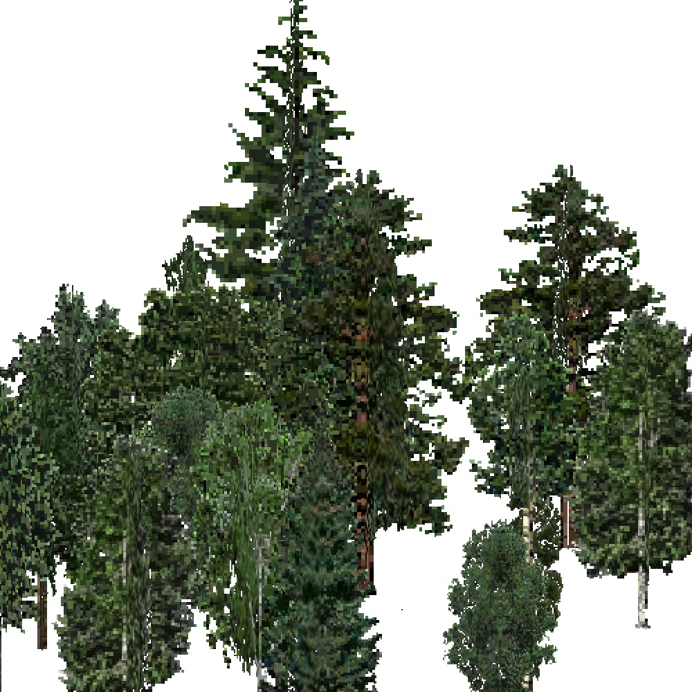 Screenshot of USA Forest, Northern Rocky Mountain, Mixed Dense