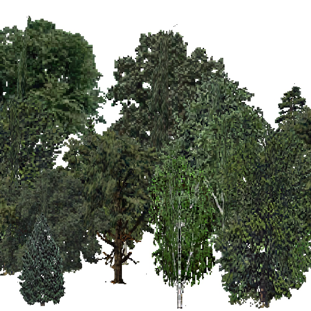 Screenshot of USA Forest, Ozark, Mixed Dense