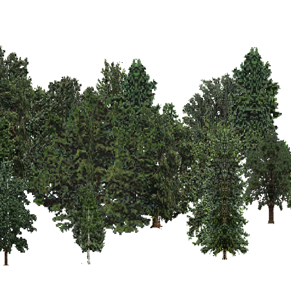 Screenshot of USA Forest, Pacific Lowland, Deciduous Dense